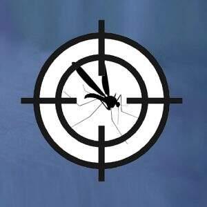 O Perigo da Chikungunya