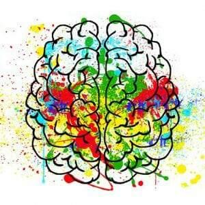 A aplicação da neuroeducação em sala de aula