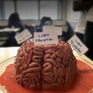 Cérebros comestíveis?